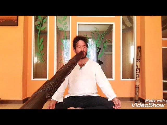 Meditazione in movimento e Didgeridoo - Onde del suono