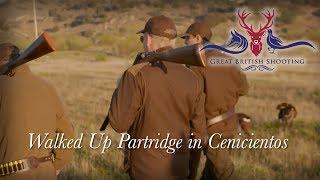Walked Up Partridge Shooting in Spain