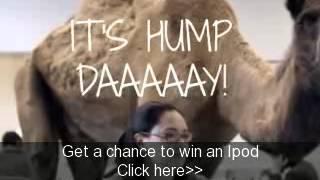 Hump Day Twerk Remix Haihayinfo