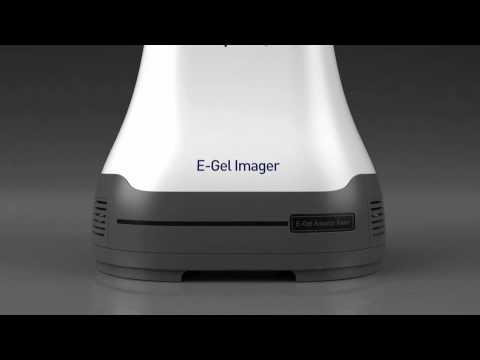 The new E-Gel® Imager: revolutionizing gel documentation