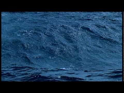 Blue Planet open (abertura)