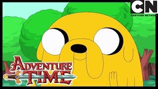 Apple Thief | Adventure Time | Cartoon Network