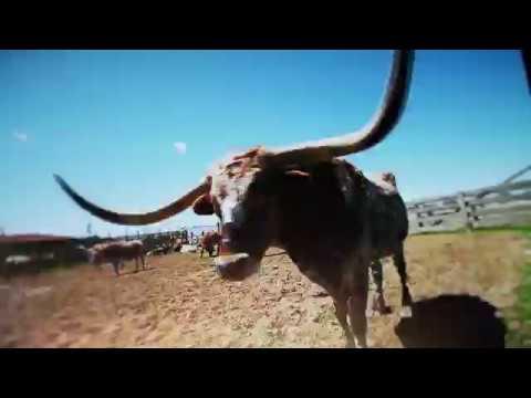 FOX Sports Southwest_Texas Rangers