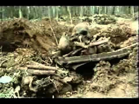Военная археология. Мясной бор.