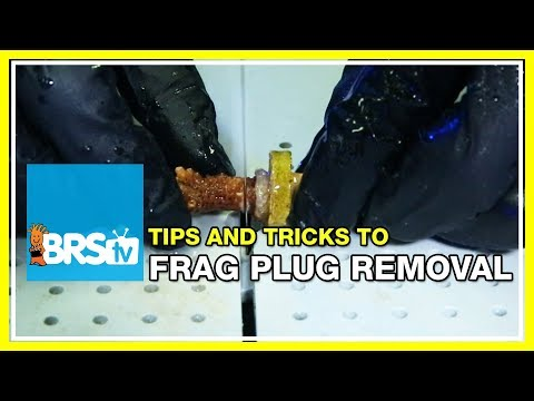 FAQ #9: How do you remove coral frags from their plugs for easy mounting in the aquarium?   52 FAQ
