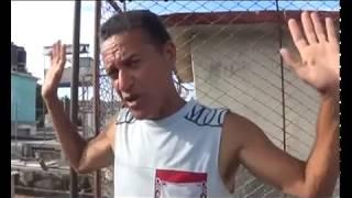 Palomeros de Cuba :Ferrer thumbnail