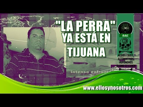 ¡Increíble! Dejan libre a 'La Perra' (CAF y CDS); ya anda en Tijuana de nuevo