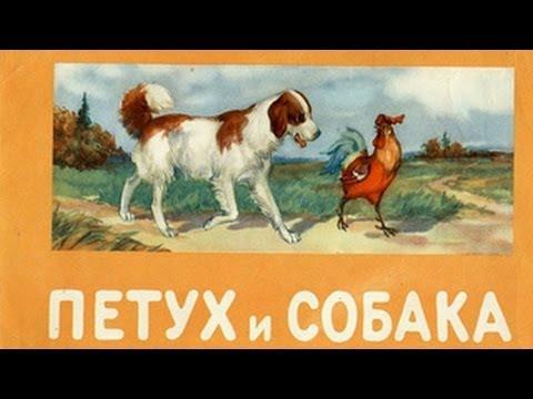 Мультфильм петух и собака смотреть