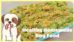 Healthy Homemade Dog Food l Food For Yor Dog Ph l Phillipines