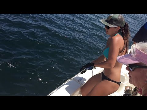 GIRL CATCHES HUGE GOLIATH GROUPER