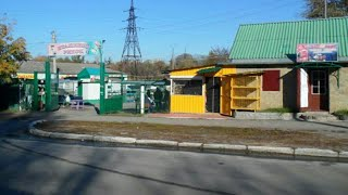 Птичий рынок в Харькове