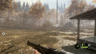 theHunter: Call of the Wild Trainer