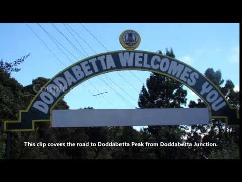 Road To Doddabetta Peak, Ooty Hd Hills And Valleys