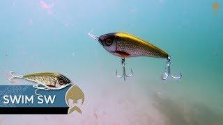 Swim SW - Westin-Fishing