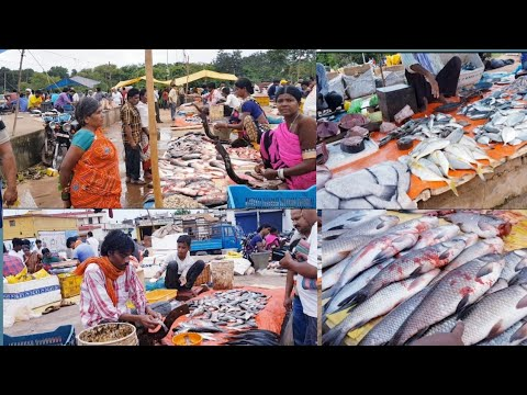 Fish Market Risali Ruabandha| Bhilai
