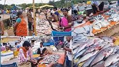 Fish Market Risali Ruabandha  Bhilai