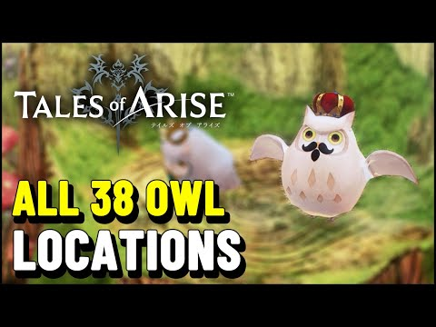 Tales of Arise ALL OWL LOCATIONS (Owl Homecoming Trophy / Achievement) |