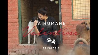 A Humane Valentine- Episode 07, With Dr. Aditi Badam