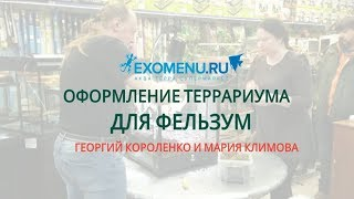 Оформление террариума для фельзум в EXOMENU.