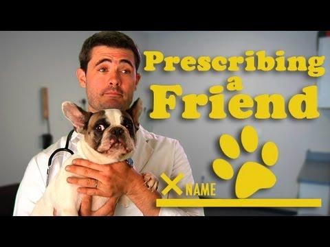 Prescribing a Friend