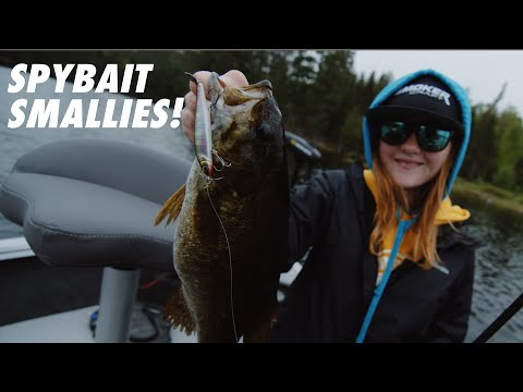 Fishing a Spybait for Bass (The Jackall iProp)
