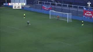Tigre - San Miguel | Semifinal (vuelta)
