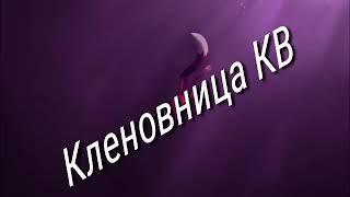 ~Коты Воители клип: Другая Реальность~