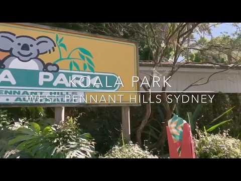 The Koala Park Sanctuary  Sydney