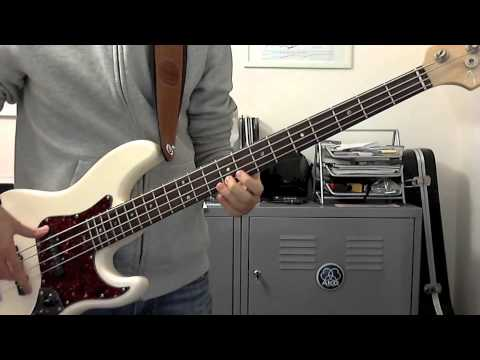 Muse: Animals bass cover