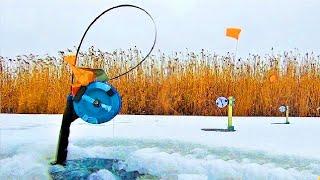 ЛОВЛЯ ЩУКИ на ЖЕРЛИЦЫ ТРОЙНИК против ДВОЙНИКА Зимняя рыбалка по ПЕРВОМУ ЛЬДУ