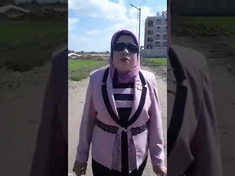 مدرسة صلاح سالم التجريبية للغات بمنية النصر تستغيث