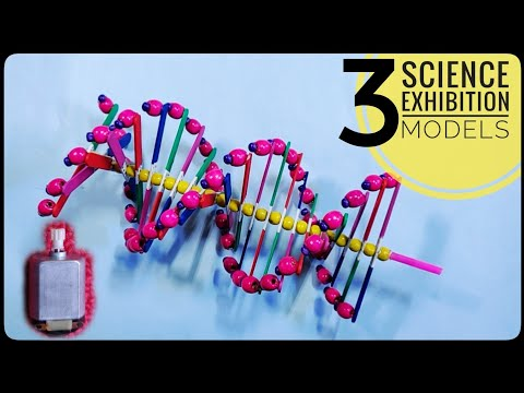 3 Easy DNA MODEL PROJECT Ideas | Science Exhibition Models |