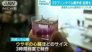 3Dプリンターで心臓を作成 原料には患者の組織(19/04/16)