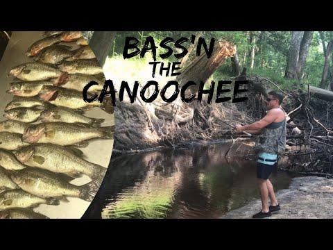 G2GO: Bass'n The Canoochee