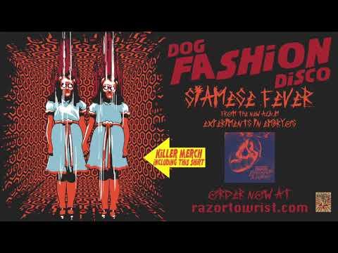 Клип Dog Fashion Disco - Siamese Fever