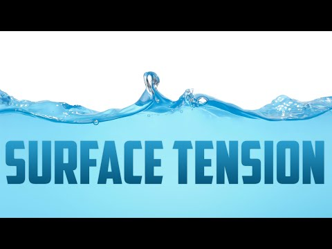How does Surface Tension work?