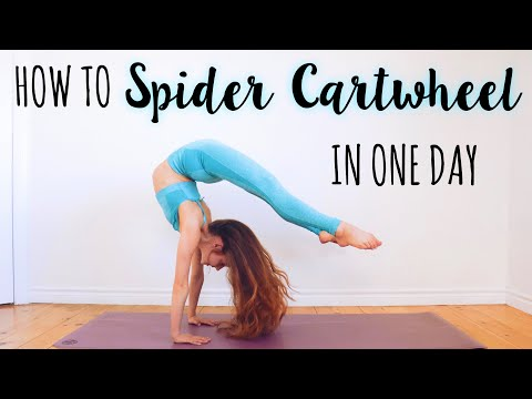 How to do a Spider Cartwheel in One Day!