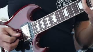 Tool - VicariousLateralusParabola Guitar Cover
