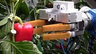Роботы для огорода  Будущее уже рядом