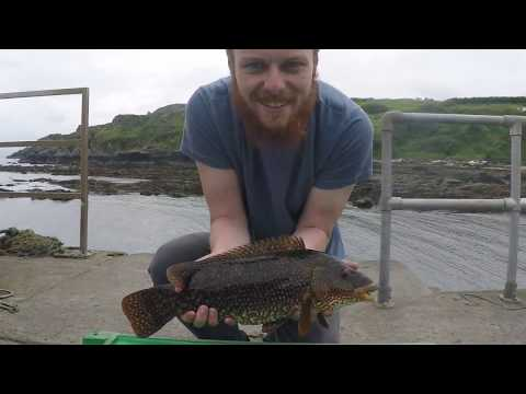 Sea Fishing - Donegal, Ireland, June 2017