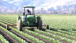 Dan Dunham's Agriculture Photography