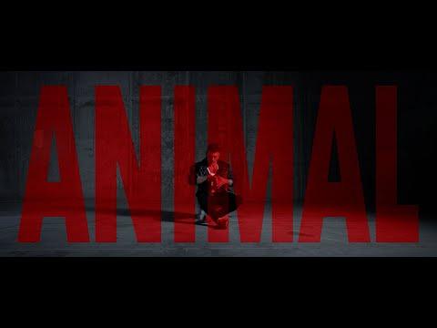 Xisco Feijoó - Animal - Single