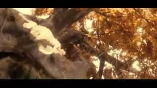 Liu Yifei - A Chinese Fairy Tale Trailer 1