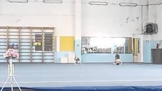 спортивная акробатика 2 юношеский разряд