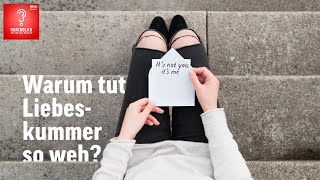 Warum schmerzt Liebeskummer? | Durchblick | Blick Podcast