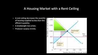 Price Ceiling | Rent Ceiling - Dead Weight Loss | Surplus