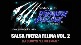 SALSA FUERZA FELINA VOL2   DJ DENNYS EL INFERNAL