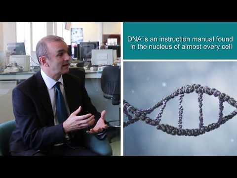 UK Biobank Genetic Data