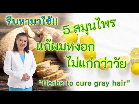 รีบหามาใช้ !! 5 สมุนไพรแก้ผมหงอก ไม่แก่กว่าวัย | Herbs to cure gray hair | พี่ปลา Healthy Fish