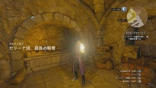 【PS4】The Witcher 3: DLC 血塗られた美酒 - #18 死が汝らを分かつまで&セリーナ団、最後の略奪(Side Quest)